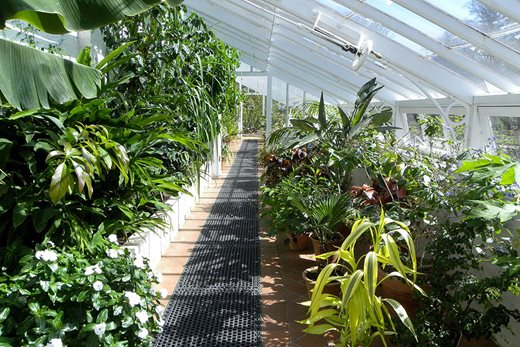 View of greenhouse at Winterbourne House
