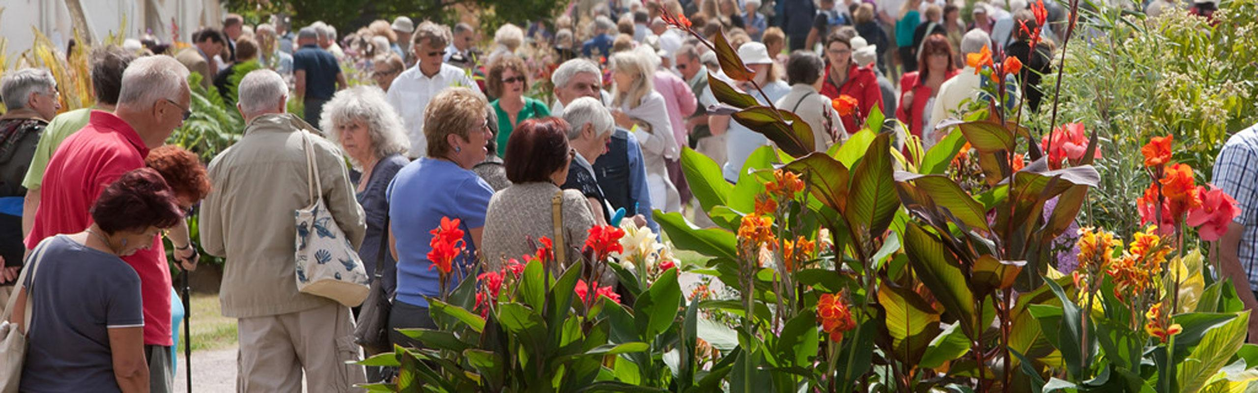Don't miss the RHS Hampton Court Palace Flower Show