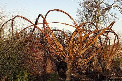 Woven willow sculptures at RHS Garden Hyde Hall