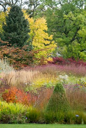 The main borders in autumn at RHS Garden Harlow Carr