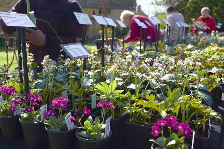 Find 2017 18 Gardening Flower Shows Uk Garden Events Days Out