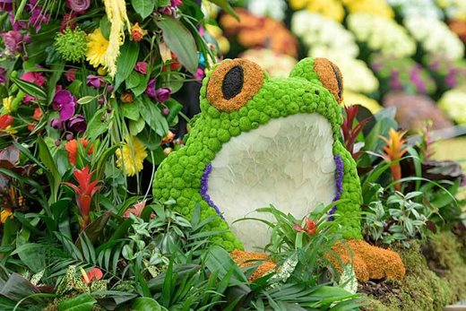 frog themed floral display