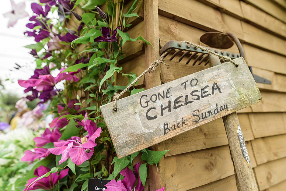 Rhs chelsea flower show 2018 rhs gardening - Chelsea flower show 2018 ...
