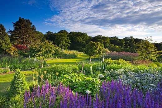 Visit RHS Gardens Shows for a stunning floral extravaganza RHS