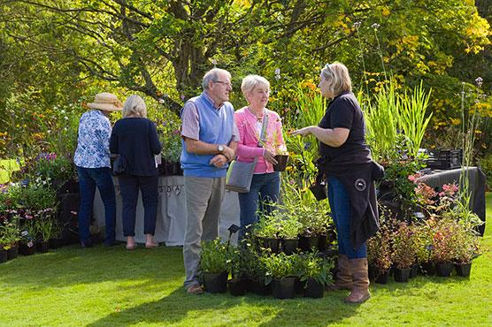 Visitors at autumn plant fair