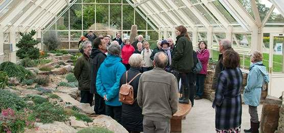 Group visit in the alpine house