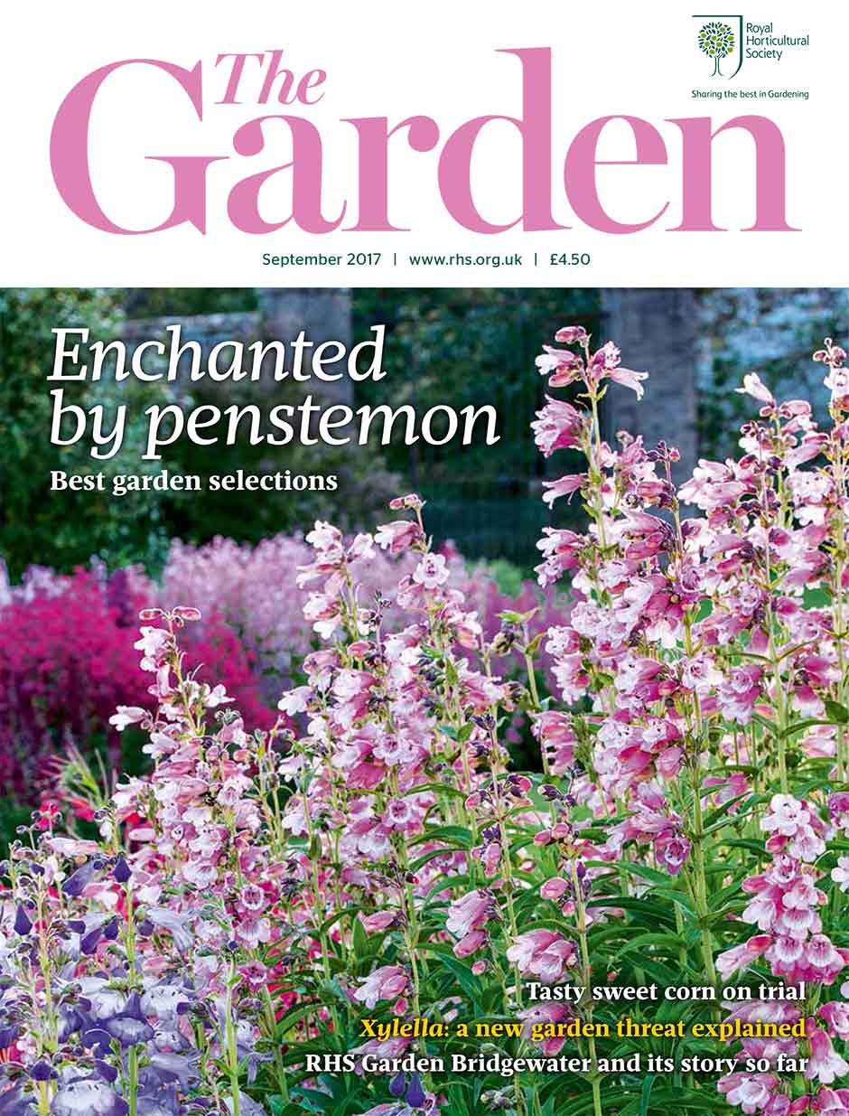 Jo Whittingham Visits A Dramatic Scottish Lochside Garden Which Is Home To  Many Southern Hemisphere ...