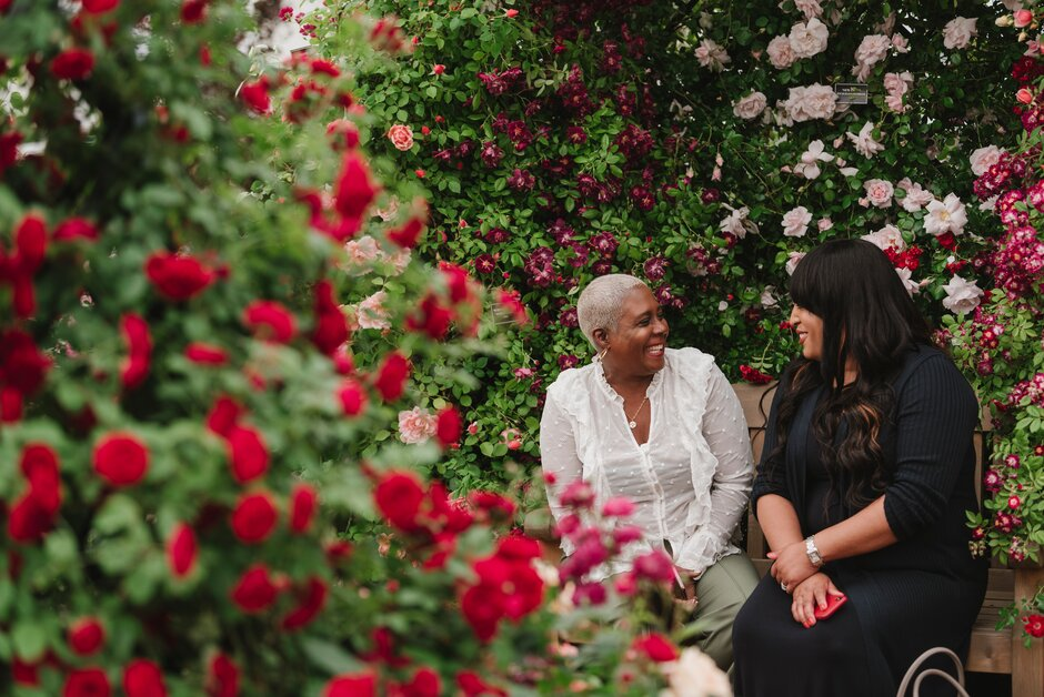 Chelsea Flower Show 2020.The Rhs Chelsea Flower Show 2020 Rhs Gardening