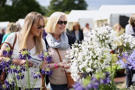 Visitors looking at Flower Show displays