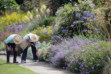 Visitors admiring the Mixed Borders, Wisley