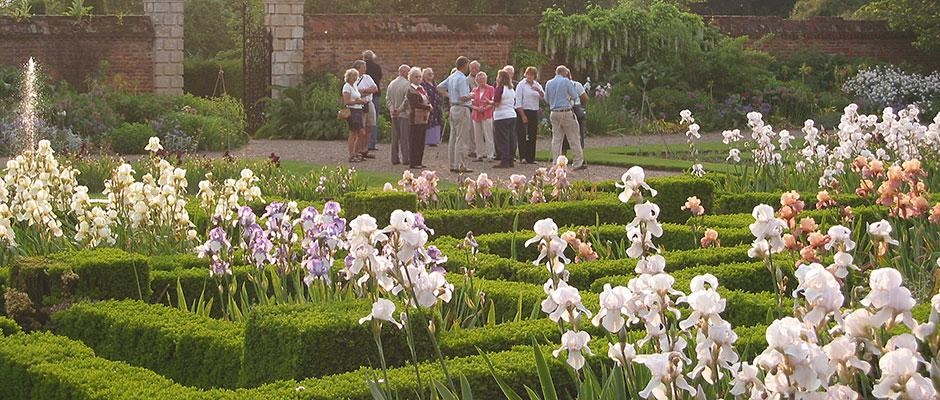 Visitors with Doddington Hall irises