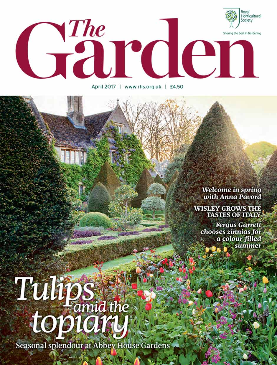 Discover a world of horticulture with 39 the garden for The landscape gardener