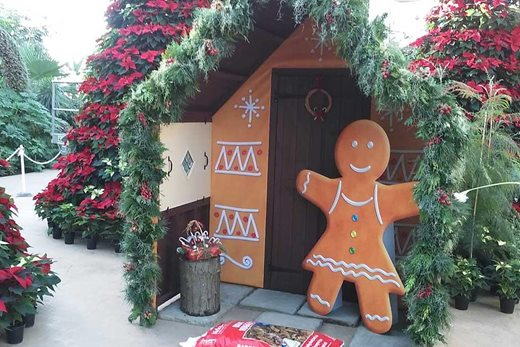 Gingerbread house in The Glasshouse at Wisley