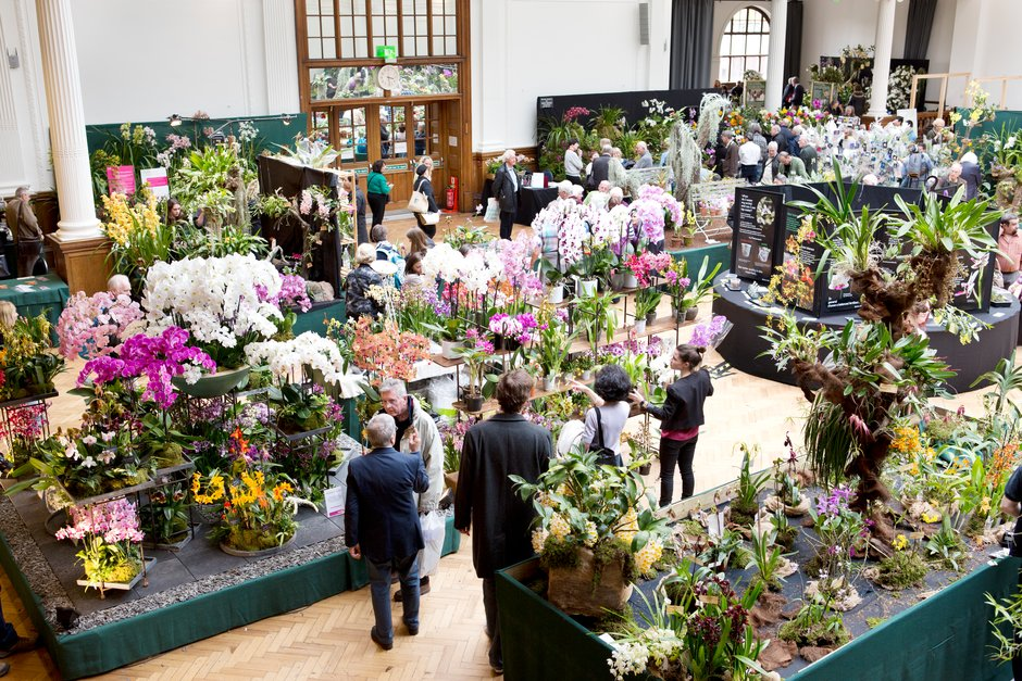 Orchid Exhibition in Lindley Hall