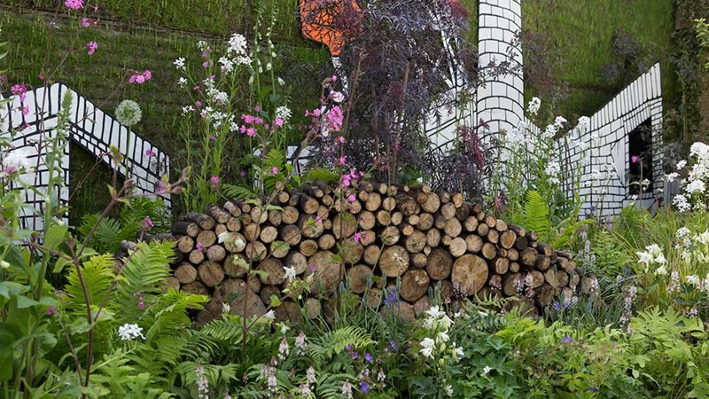 Rhs Chelsea Flower Show 2017 Show Gardens Rhs Gardening