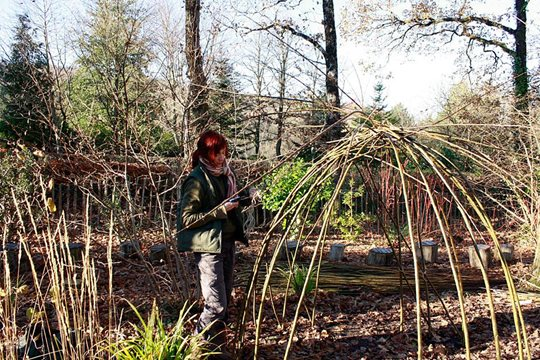 Susie building a willow den