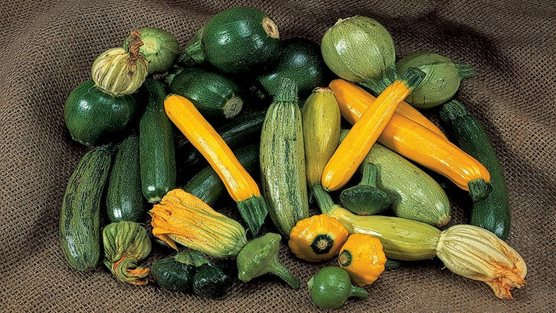 How To Grow Courgettes Rhs Gardening